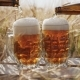 Two Glasses of Cold Beer Stands on a Wooden Box in the Field - VideoHive Item for Sale