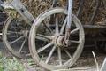Wood Wheels - PhotoDune Item for Sale