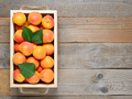 Apricots in box on wooden table - PhotoDune Item for Sale