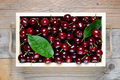 Cherry in wooden box close-up - PhotoDune Item for Sale