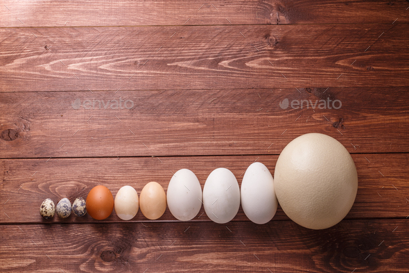 Differet size eggs from different birds - Stock Photo - Images
