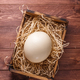 Ostrich egg on straw in wooden box, place for wording, dark background - PhotoDune Item for Sale