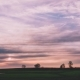 A Magnificent Sunset Over a Field with Pink Hues on the Clouds - VideoHive Item for Sale