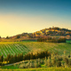 Casale Marittimo village, vineyards and landscape in Maremma. Tu - PhotoDune Item for Sale