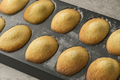 Fresh baked French madeleines - PhotoDune Item for Sale