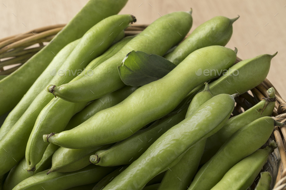 Fresh raw broad beans in the pod - Stock Photo - Images