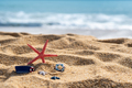 Closeup of starfish on tropical beach, Summer vacation concept - PhotoDune Item for Sale