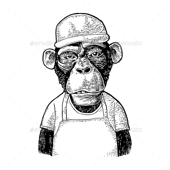 Monkeys Fast Food Worker Vintage Black Engraving - Animals Characters