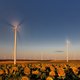 wind power turbine - PhotoDune Item for Sale