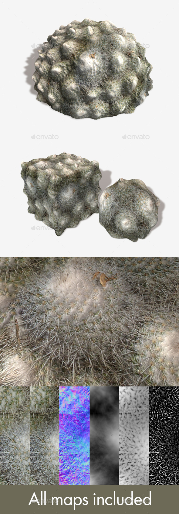 Ground Cactus Seamless Texture - 3DOcean Item for Sale
