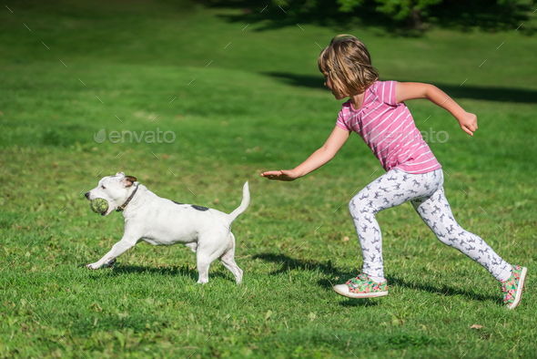 Girl chasing after dog in park - Stock Photo - Images