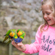 Cute girl feeding parrots in zoo - PhotoDune Item for Sale