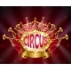 Vector Circus Signboard with Glowing Light Bulbs