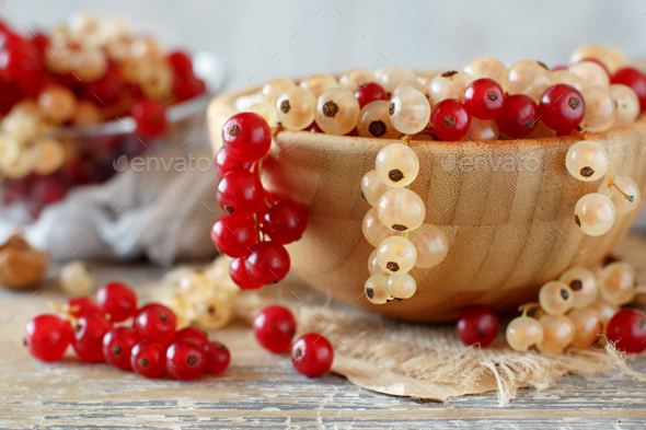 Red and white currants - Stock Photo - Images