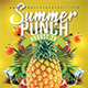 Summer Punch Party - GraphicRiver Item for Sale