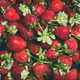 Fresh strawberry texture, wallpaper and background - PhotoDune Item for Sale