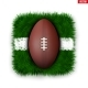 Icon of Football Field Ball on Grass - GraphicRiver Item for Sale
