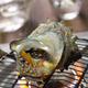 grilled horned turban shell, japanese food - PhotoDune Item for Sale