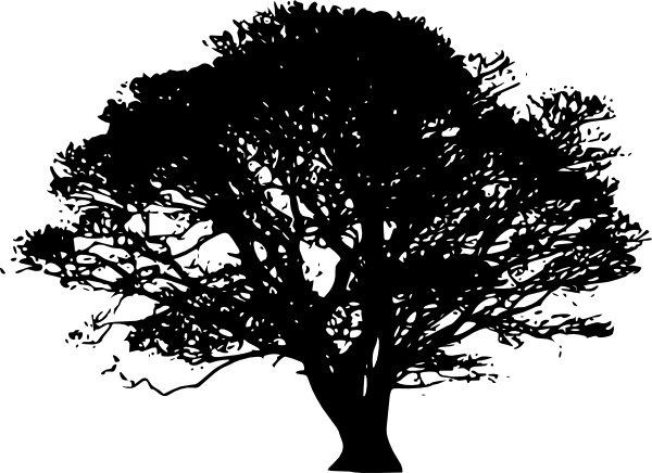 251050