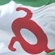 Flag of Ingushetia Waving - VideoHive Item for Sale