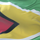 Flag of Guyana Waving - VideoHive Item for Sale