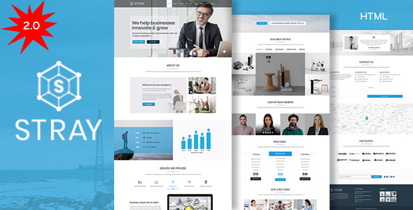 Stray - Business Landing Page HTML Template with RTL - Business Corporate