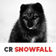 10 CR Snowfall Lightroom Presets