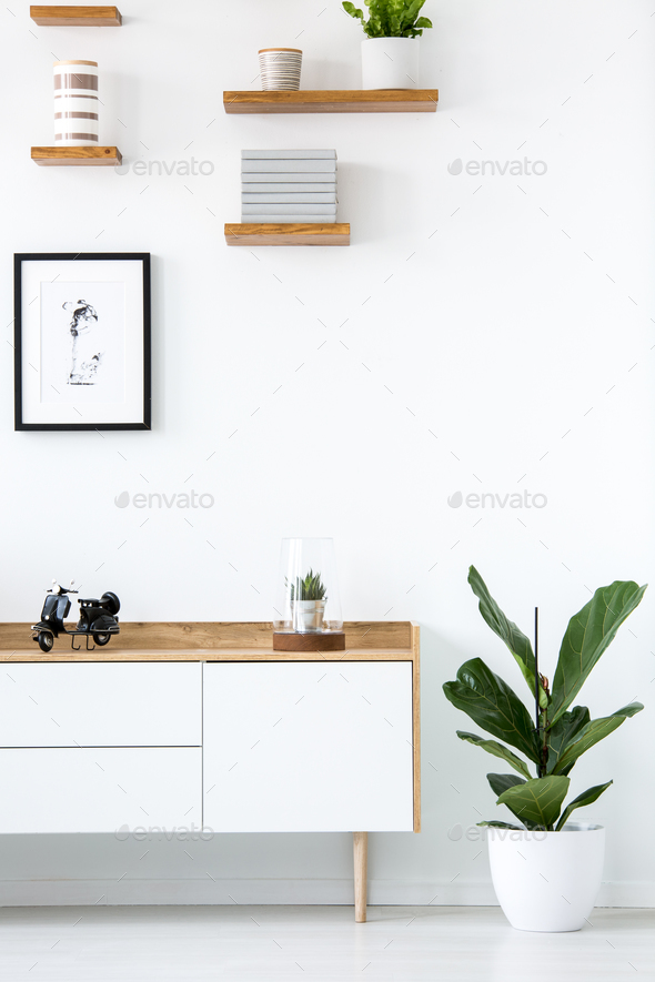 Plant next to wooden cupboard against white wall with poster in - Stock Photo - Images