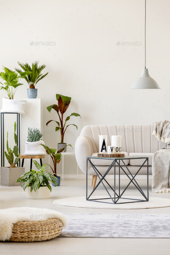 Real photo of a beige living room interior with a sofa standing - Stock Photo - Images