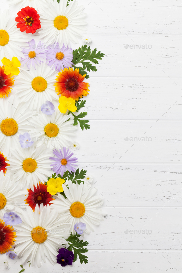 Garden flowers on wooden background - Stock Photo - Images