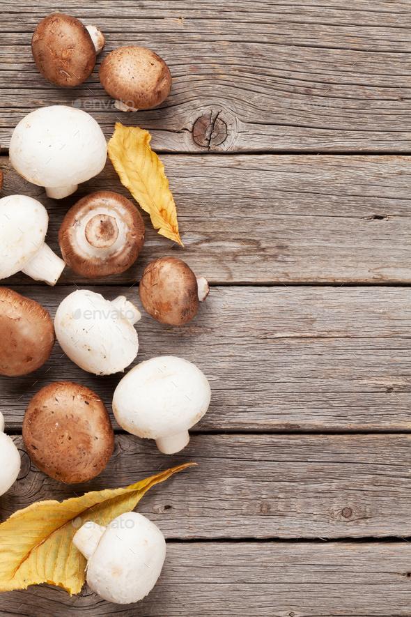 Champignon mushrooms - Stock Photo - Images