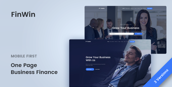 Image of FinWin - One Page Business Finance Template