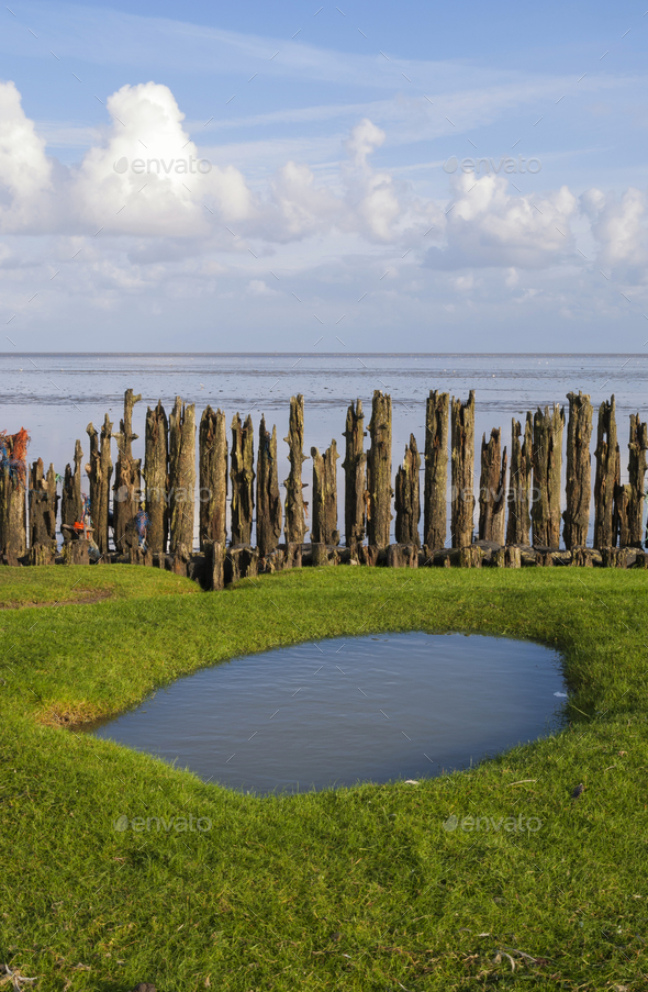 Row of poles in the Waddensea - Stock Photo - Images