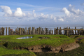 Row of poles in the Waddensea - PhotoDune Item for Sale