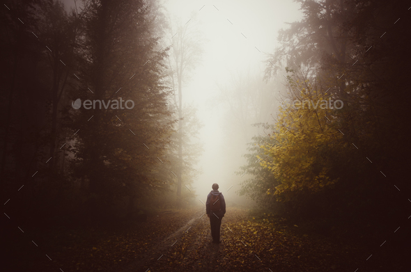 Man silhouette on unknown path in mysterious forest with fog - Stock Photo - Images