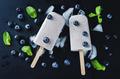 Vanilla blueberry cream cheese ice cream with fresh blueberries - PhotoDune Item for Sale