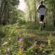 The Athlete Runs Through the Forest on a Beautiful Sunny Day - VideoHive Item for Sale