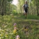 A Middle-aged Man, Quickly Runs Along the Path in the Forest A Beautiful Sunny Day - VideoHive Item for Sale
