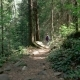 Beautiful Young Tourist Girl Walks Through the forest - VideoHive Item for Sale