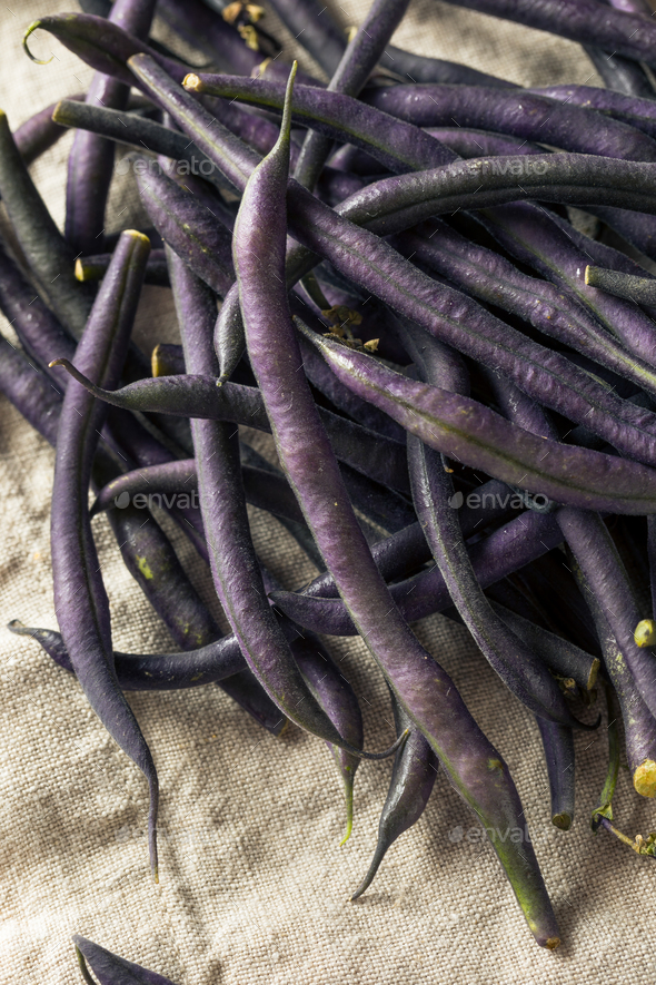 Raw Purple Organic String Beans - Stock Photo - Images