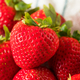 Raw Red Organic Strawberries - PhotoDune Item for Sale