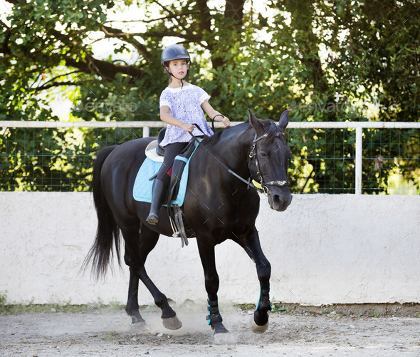 riding child and horse - Stock Photo - Images