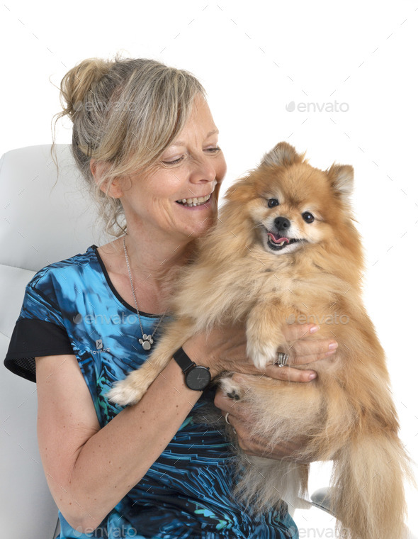 pomeranian and woman - Stock Photo - Images