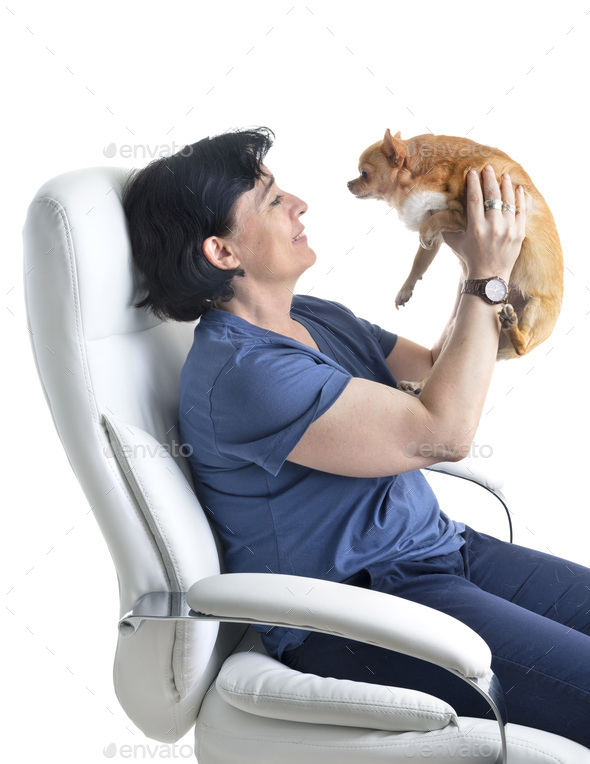 young chihuahua and woman - Stock Photo - Images