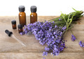 lavender and essential oils - PhotoDune Item for Sale