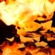 Nachos Cooking on Fire - VideoHive Item for Sale