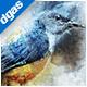 WatercolorPaint - Photoshop Action - GraphicRiver Item for Sale