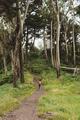 Hiking - PhotoDune Item for Sale