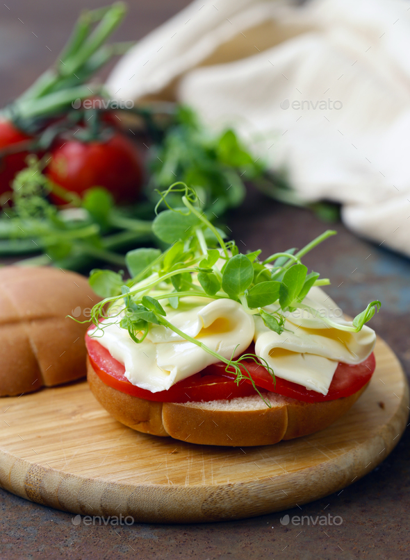 Sandwich with Cheese - Stock Photo - Images
