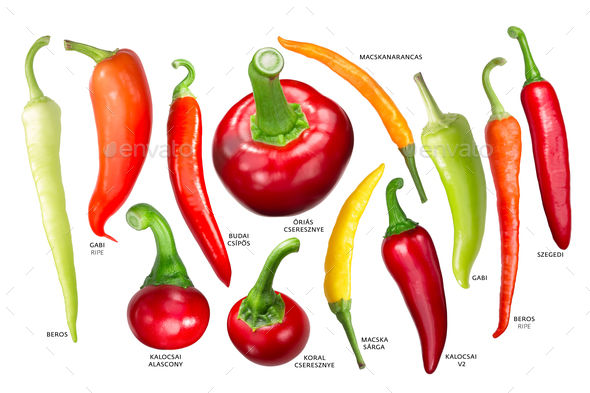 Hungarian paprika peppers, paths - Stock Photo - Images